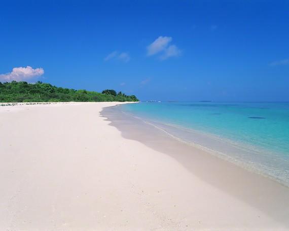 どこまでも続くサンゴ礁の白い砂浜