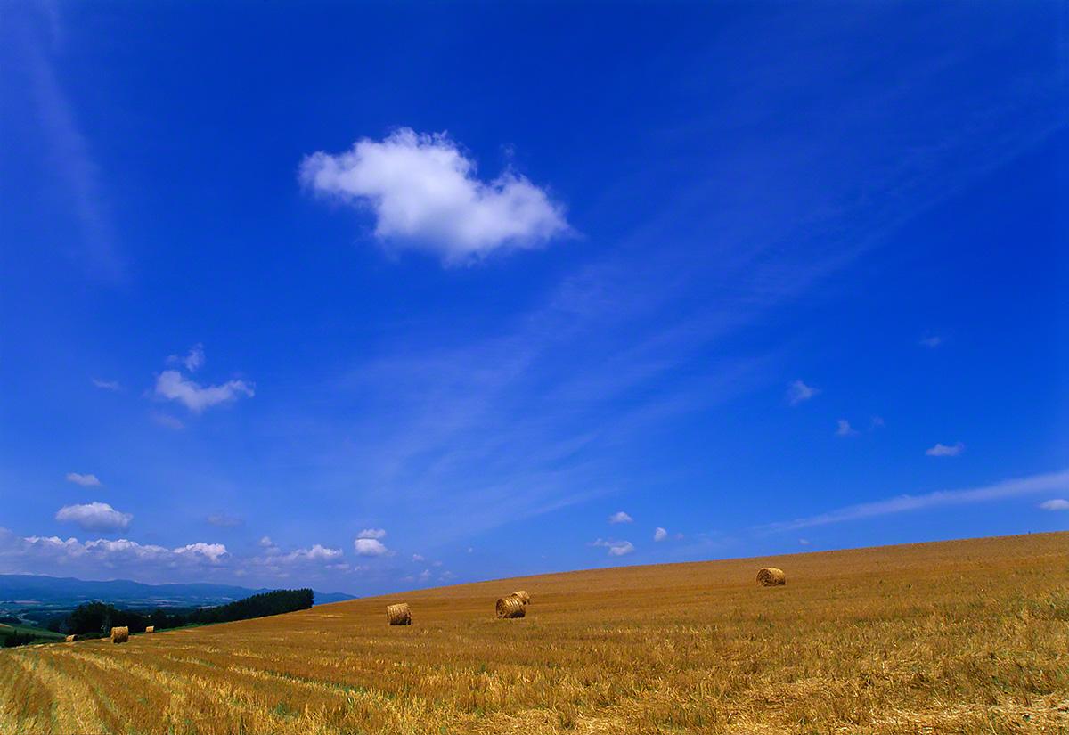 牧草ロールの丘と青空に浮かぶ雲