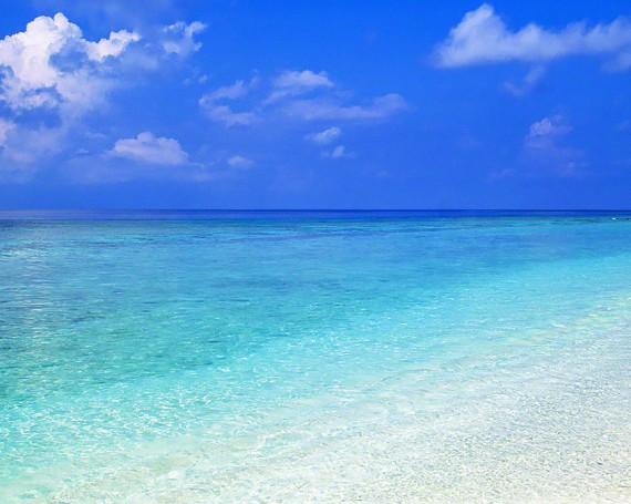 珊瑚礁の波打ち際