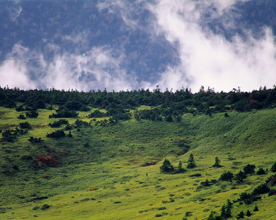 稜線の向こうに立ち上がる霧