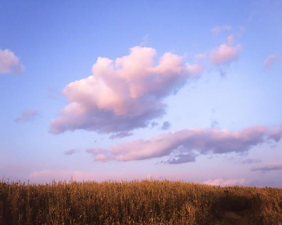 葺原に浮かぶ夕焼け雲