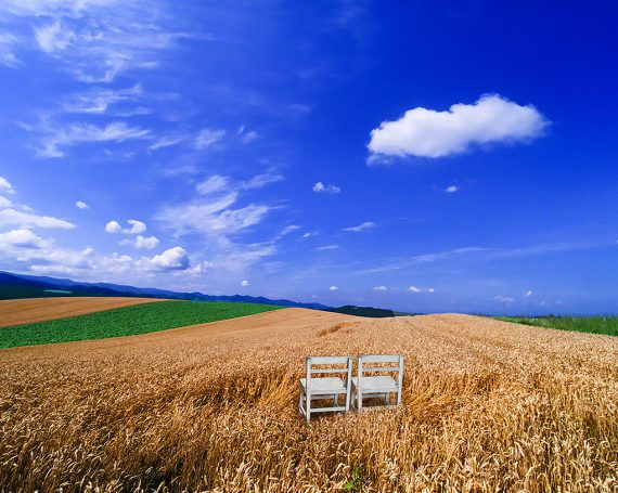 青空に浮かぶ雲と麦畑の中の白い椅子